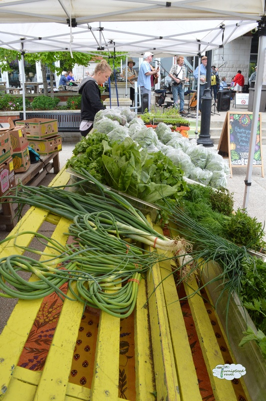 Garlic scapes Dolway Organic Garden farmers market booth Covent Garden