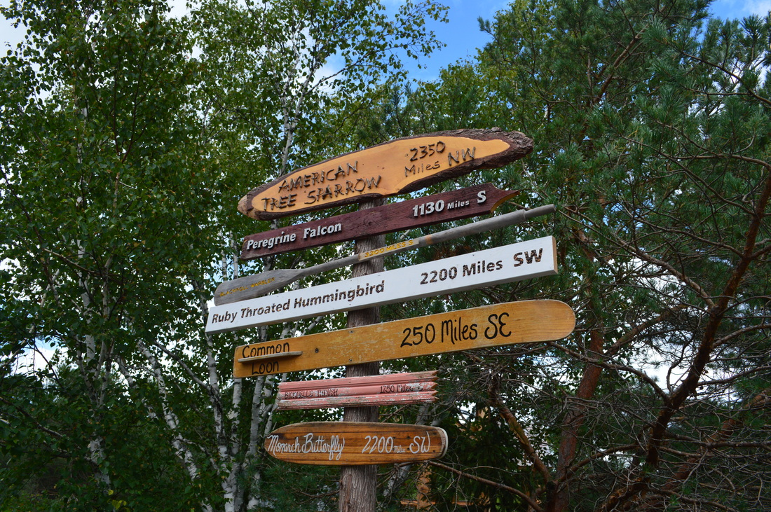 Sign post at the Wild Center in the Adirondacks