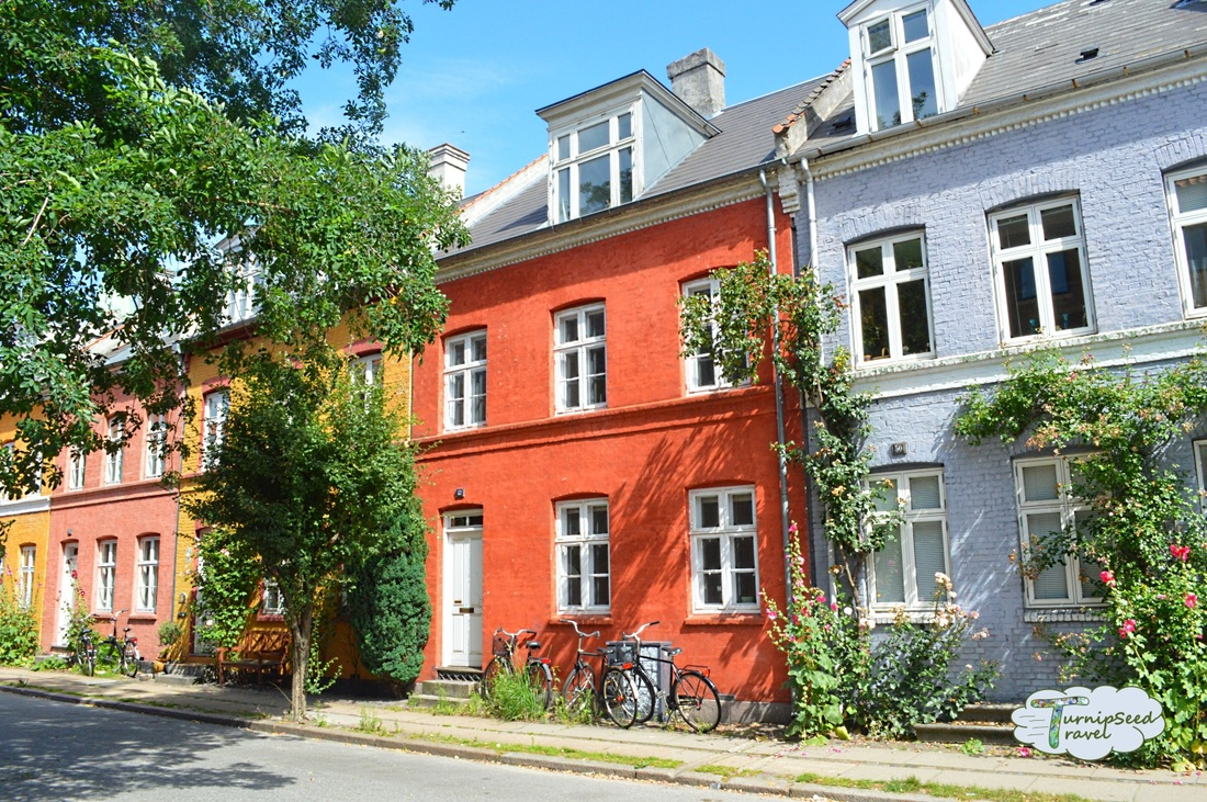 Colorful row houses and flowers in central Copenhagen. Picture
