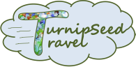 Turnipseed Travel