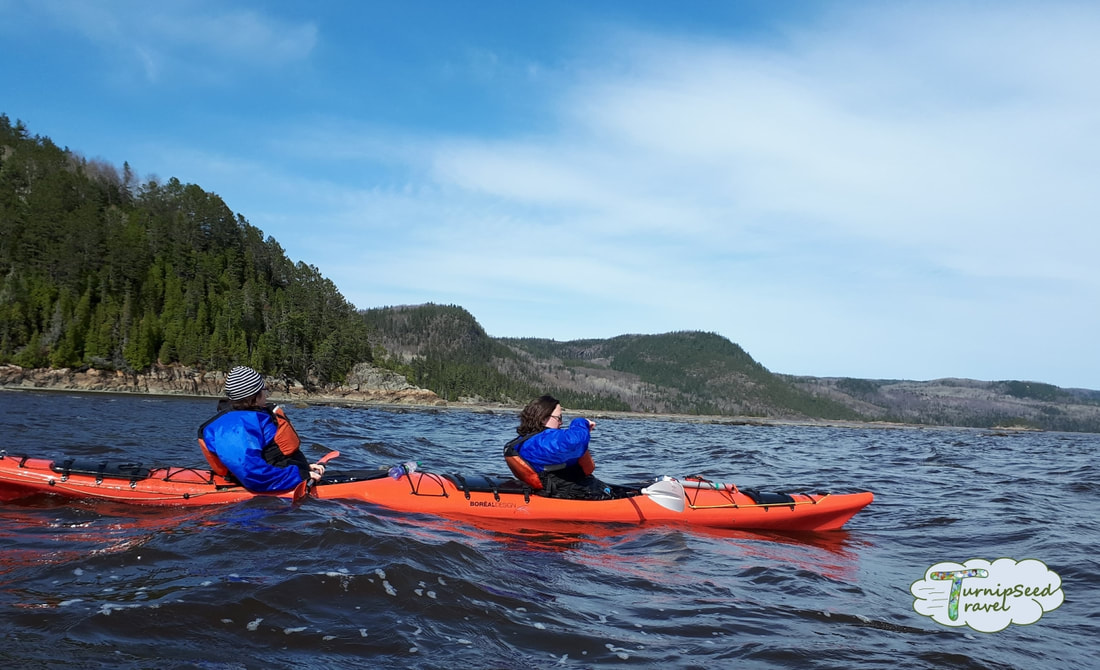 Kayaking the Saguenay Fjord Picture