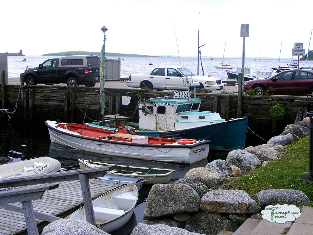 Boats docked in Lunenberg