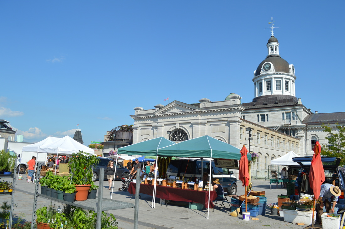 Farmers Market City Hall Kingston www.turnipseedtravel.com