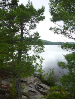 Grand Lake Tom Thompson Jack Pine Travel