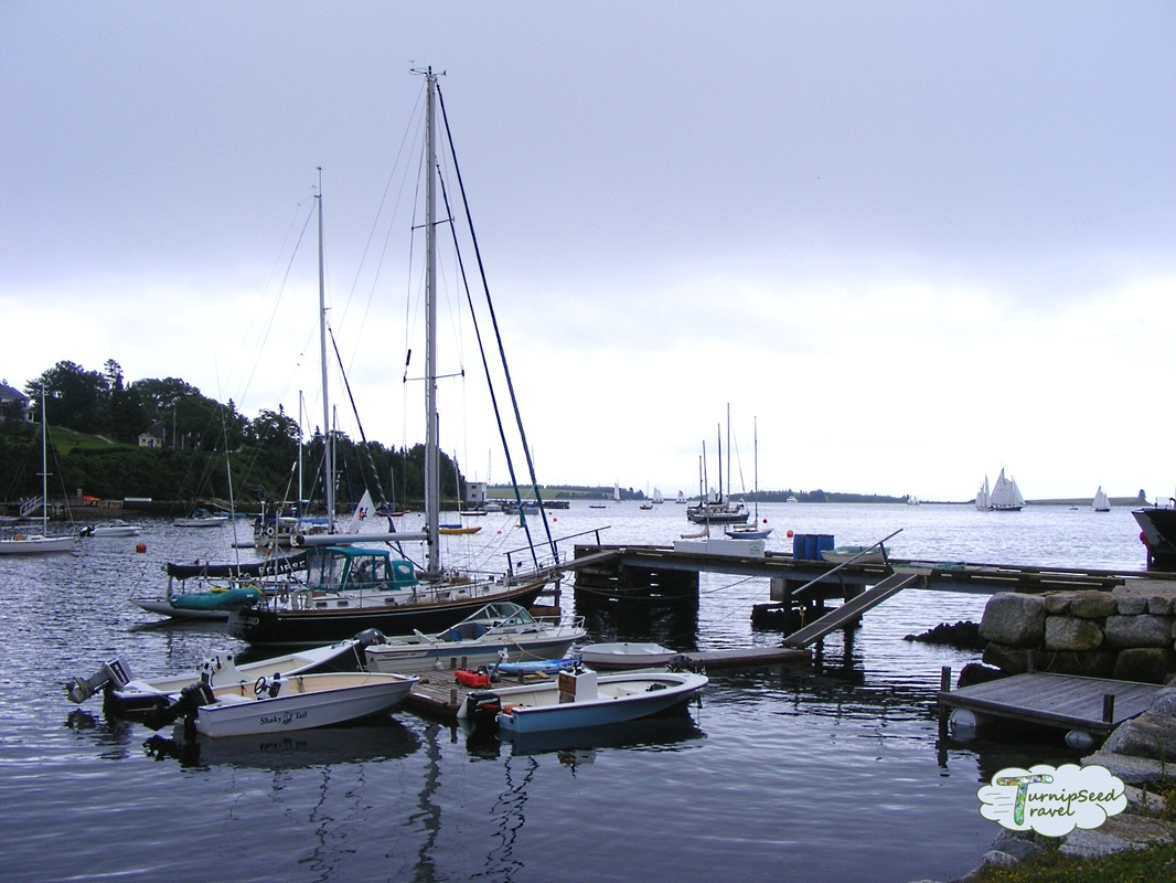 The harbour in Chester, Nova Scotia
