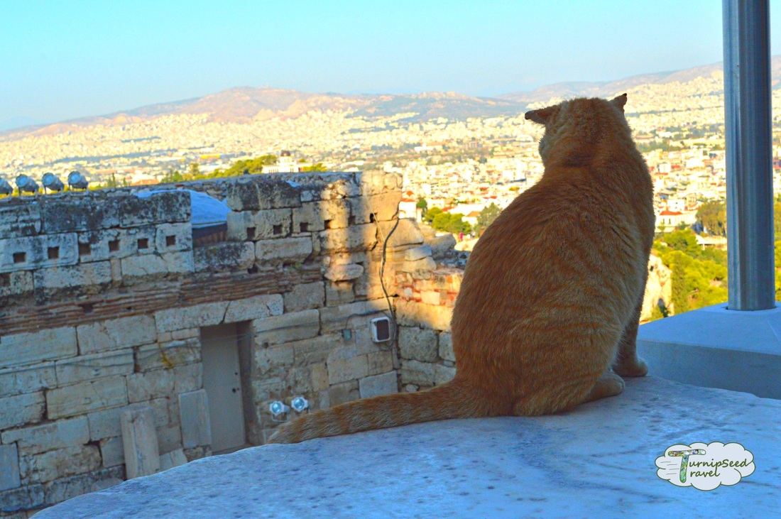 Hostels Athens - touring the Acropolis. Picture