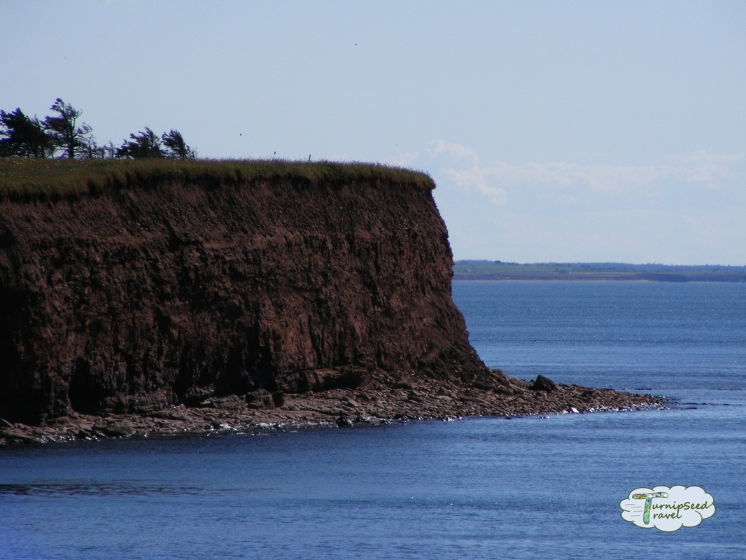 Cape North PEI