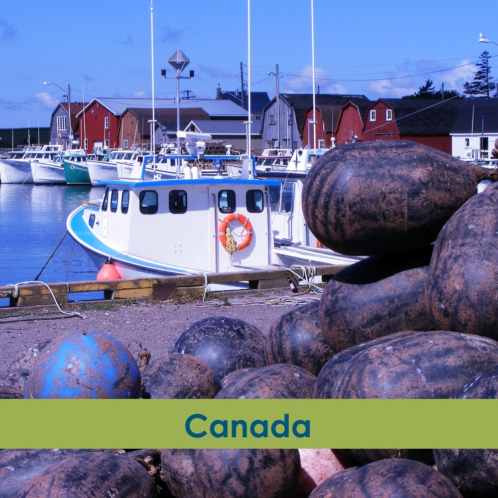 Turnipseed Travel Category Canada