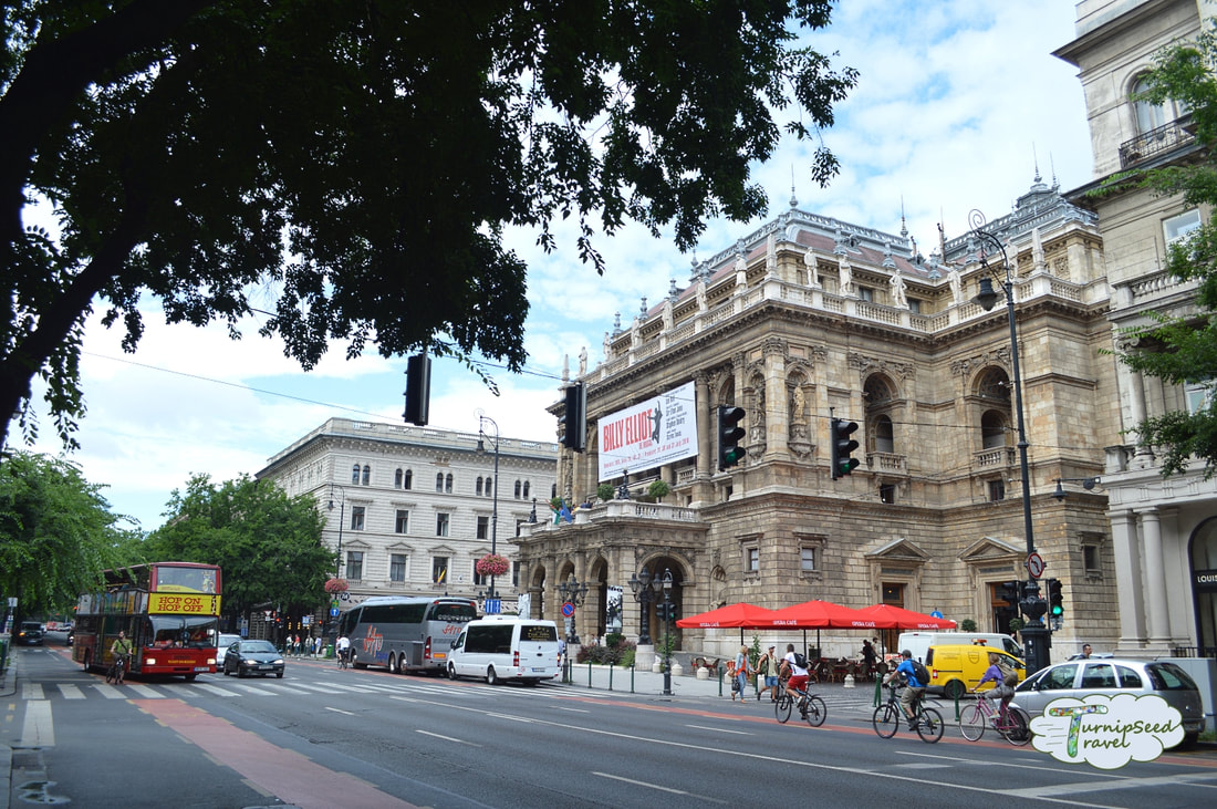 Hungarian State Opera House Picture