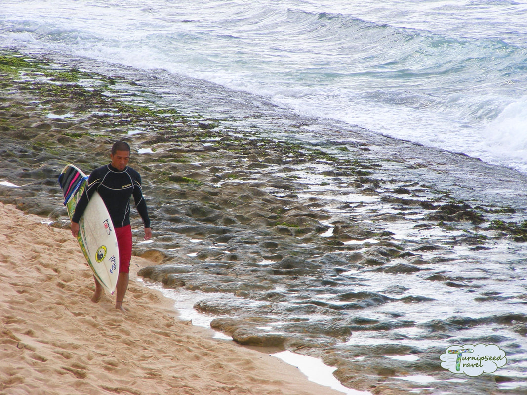Surfing North Shore Oahu Hawaii Picture