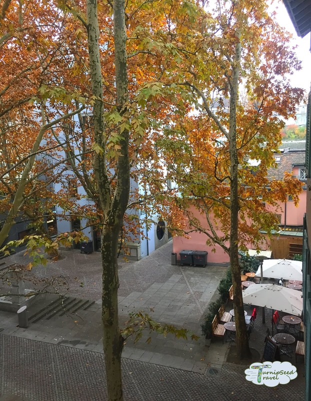 Where to stay in Zurich View of courtyard with tree