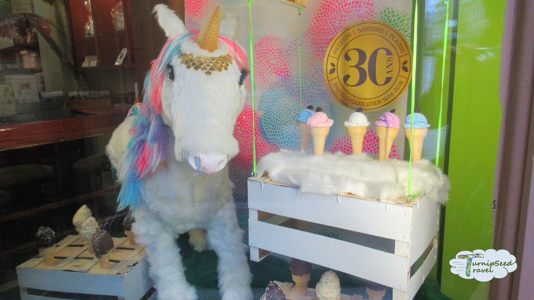 Quebec City food tour candy shop with unicorn and ice cream cones Picture