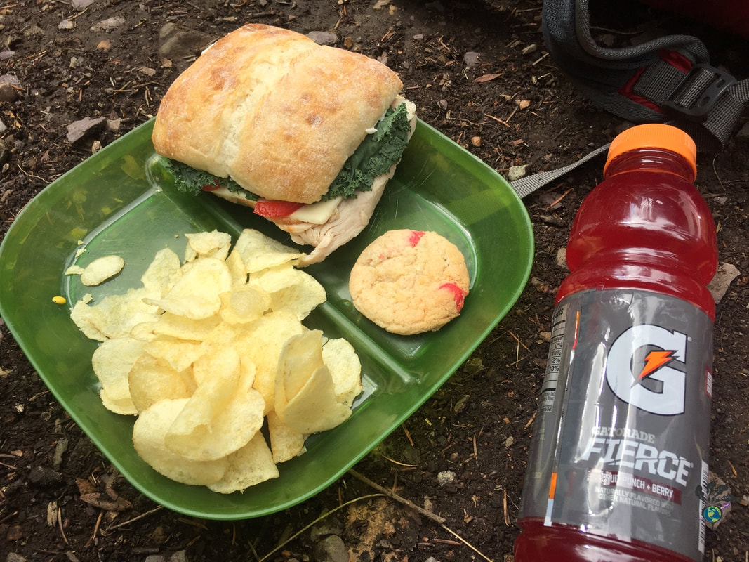 Green picnic plate with sandwich chips and cookies Picture