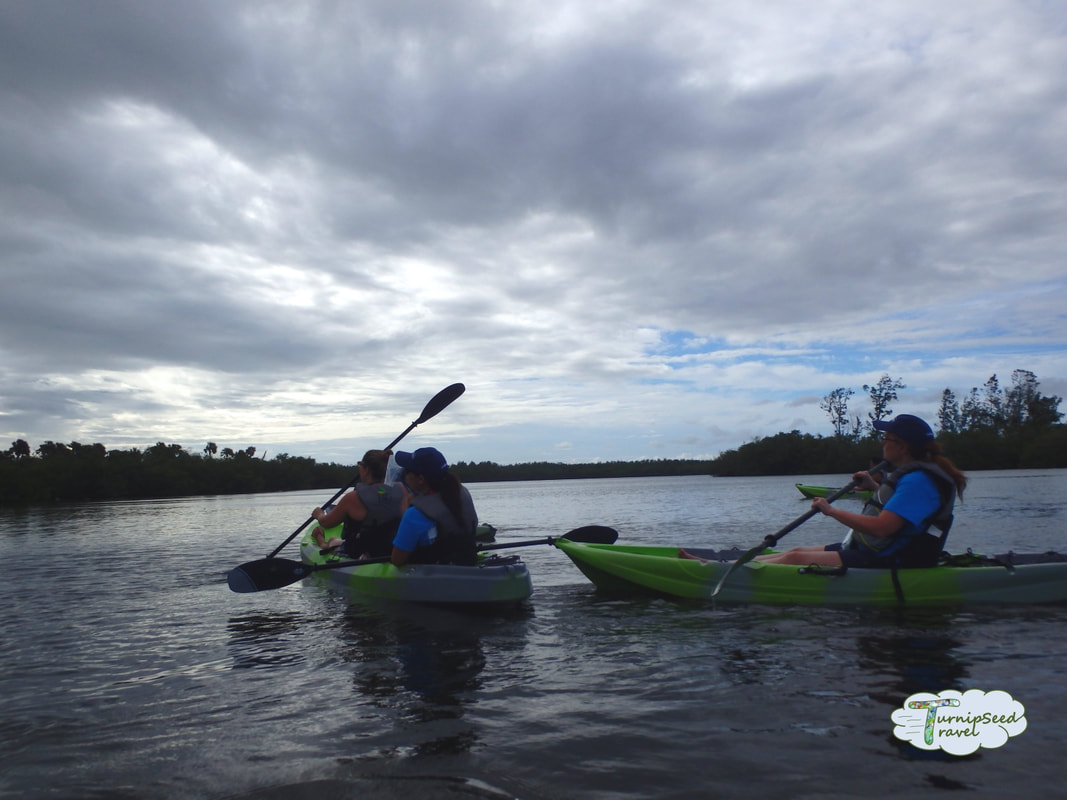 Kayaking Indian River Lagoon Sebastian Inlet State Park Florida Picture