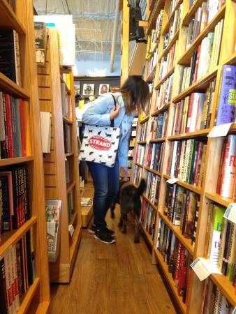 Woman and her dog look at books in a narrow walkway between bookshelvesPicture