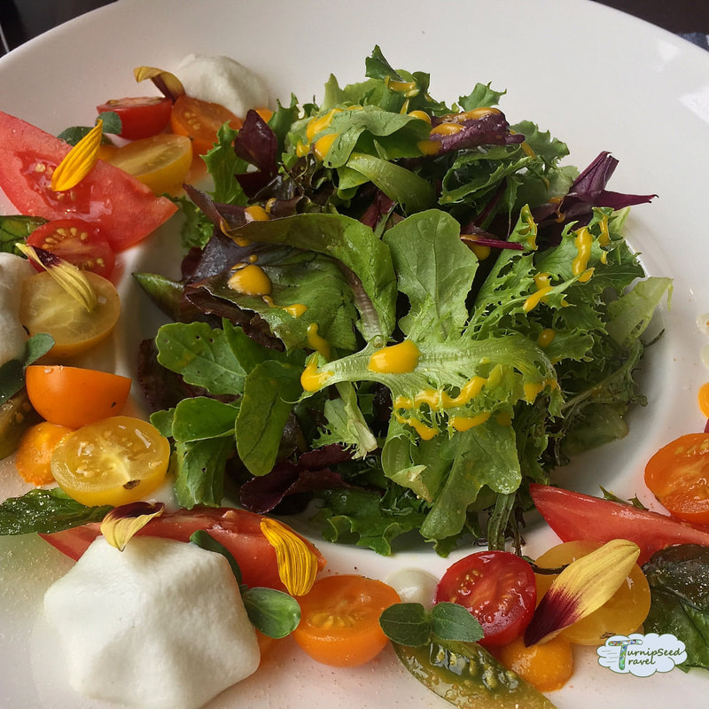 Salad with heirloom tomatoes and crispy basil leaves.