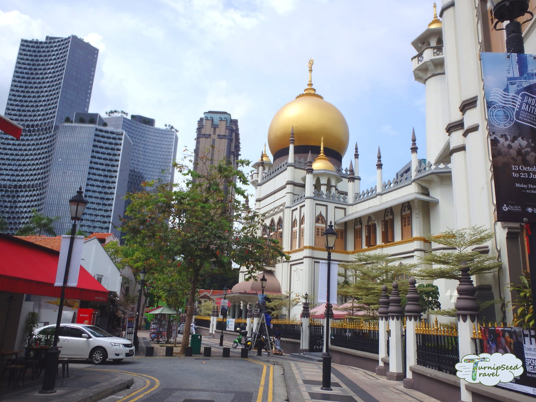 Cultural buildings and temples next to high rise buildings in Singapore